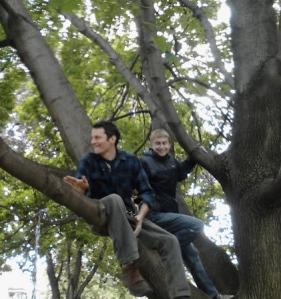 2012.pdc.treesit