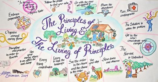principles4